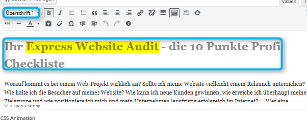 seo-audit-checkliste-7-h1