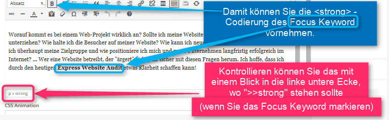 seo-audit-checkliste-8-strong-codierung